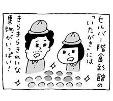 第13回「旬の果物をおいしく食べる(冬)」